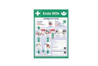 Aushang zur Ersten Hilfe Plakat DINA2 WSÖ,